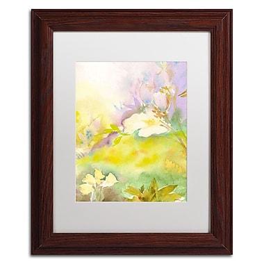 Trademark Fine Art SG5701-W1114MF