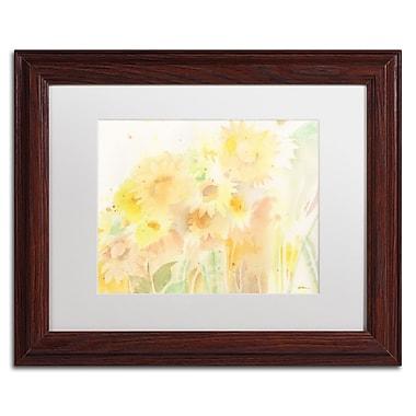 Trademark Fine Art SG5713-W1114MF