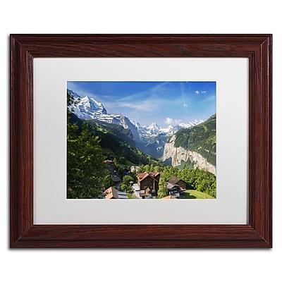 Trademark Fine Art PSL0295-W1114MF