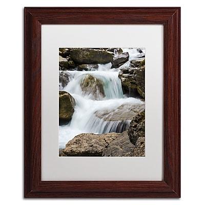 Trademark Fine Art PSL0296-W1114MF
