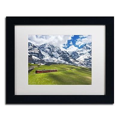 Trademark Fine Art PSL0297-B1114MF