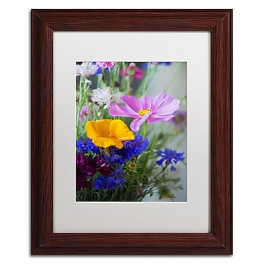 Trademark Fine Art PSL0334-W1114MF
