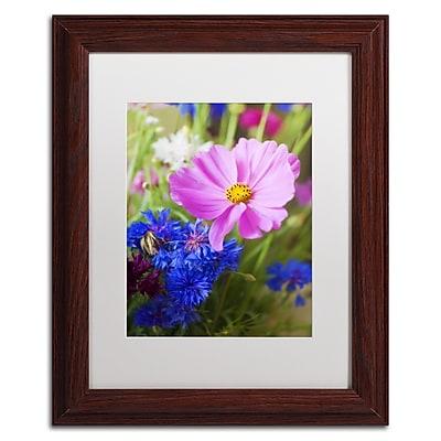 Trademark Fine Art PSL0333-W1114MF
