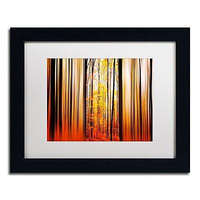 Trademark Fine Art PSL0305-B1114MF