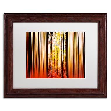 Trademark Fine Art PSL0305-W1114MF