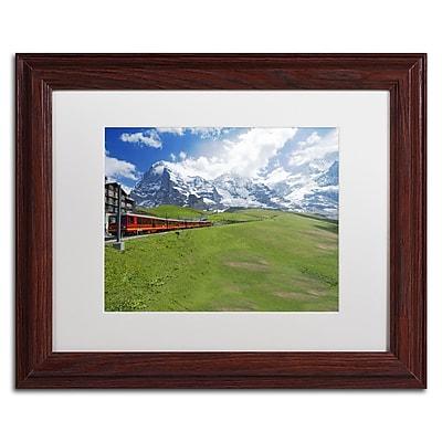 Trademark Fine Art PSL0307-W1114MF