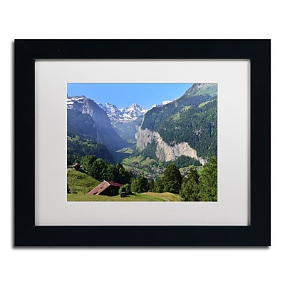 Trademark Fine Art PSL0308-B1114MF