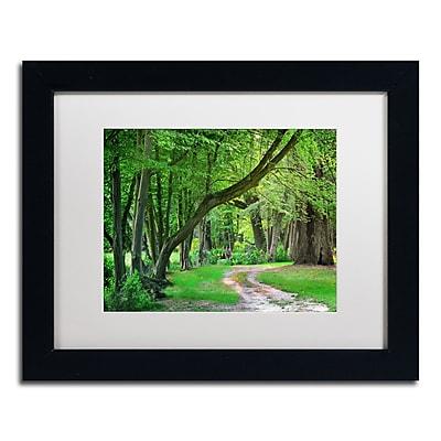 Trademark Fine Art PSL0309-B1114MF