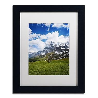 Trademark Fine Art PSL0314-B1114MF