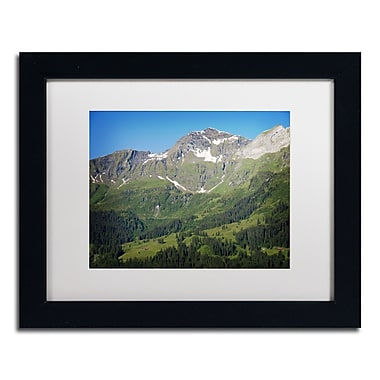 Trademark Fine Art PSL0318-B1114MF