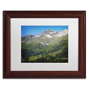 Trademark Fine Art PSL0318-W1114MF