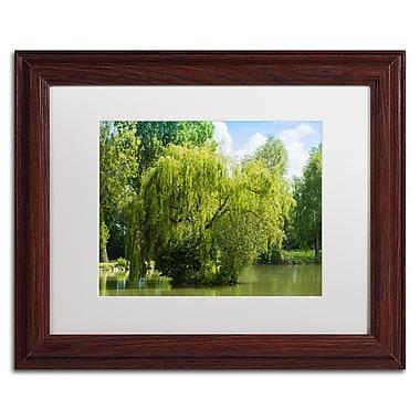 Trademark Fine Art PSL0319-W1114MF