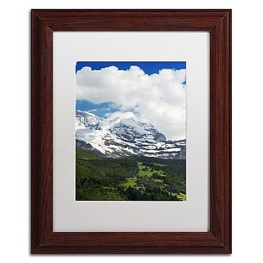 Trademark Fine Art PSL0321-W1114MF
