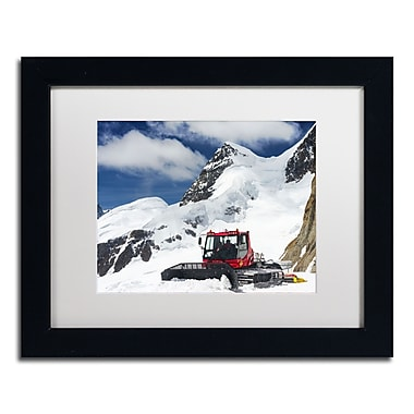 Trademark Fine Art PSL0325-B1114MF