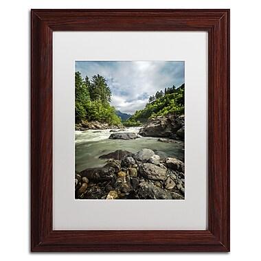 Trademark Fine Art PSL0328-W1114MF