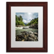 "Trademark Fine Art PSL0328-W-MF ""Waterland"" by Philippe Sainte-Laudy Framed Art, White Matted"
