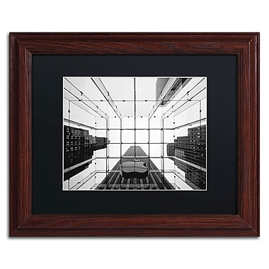 Trademark Fine Art NP0010-W1114BMF
