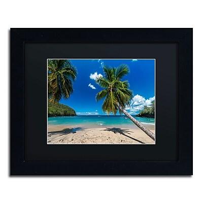 Trademark Fine Art RV0020-B1114BMF