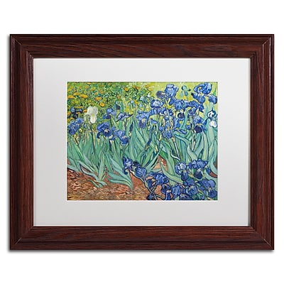 Trademark Fine Art BL0317-W1114MF