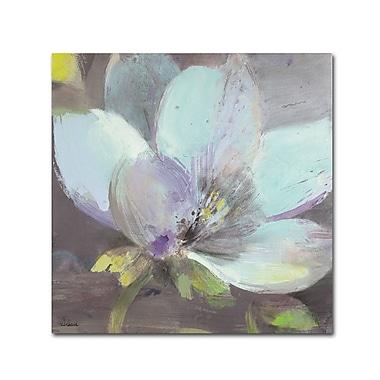 Trademark Fine Art WAP0088-C2424GG