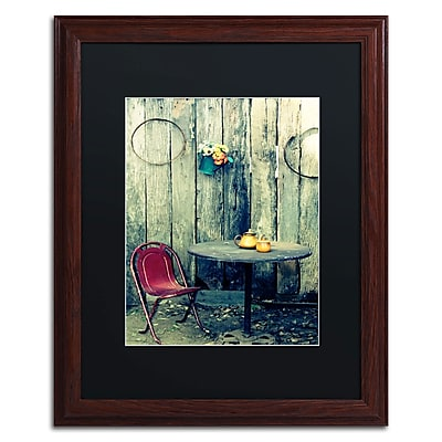 Trademark Fine Art BC0123-W1620BMF