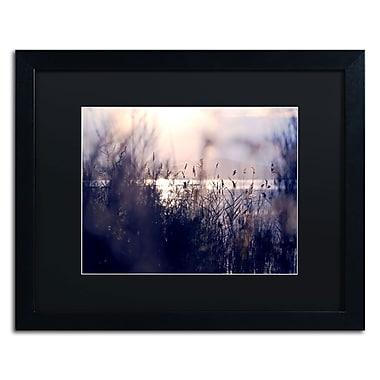 Trademark Fine Art BC0116-B1620