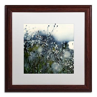 Trademark Fine Art BC0126-W1616MF