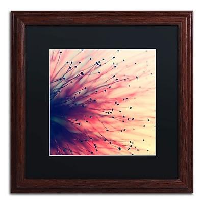 Trademark Fine Art BC0127-W1616BMF
