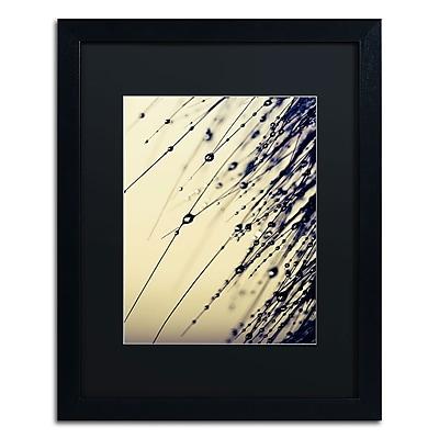Trademark Fine Art BC0135-B1620BMF