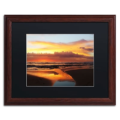 Trademark Fine Art BC0138-W1620BMF