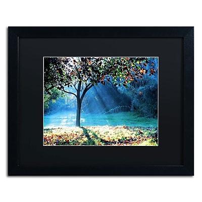 Trademark Fine Art BC0144-B1620BMF
