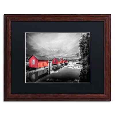Trademark Fine Art EB0053-W1620BMF