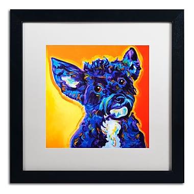 Trademark Fine Art ALI0579-B1616MF