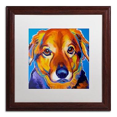 Trademark Fine Art ALI0554-W1616MF