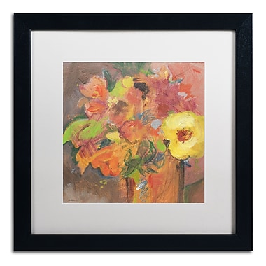 Trademark Fine Art SG5711-B1616MF