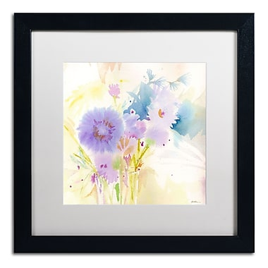 Trademark Fine Art SG5708-B1616MF