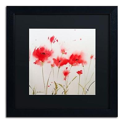 Trademark Fine Art SG5707-B1616BMF