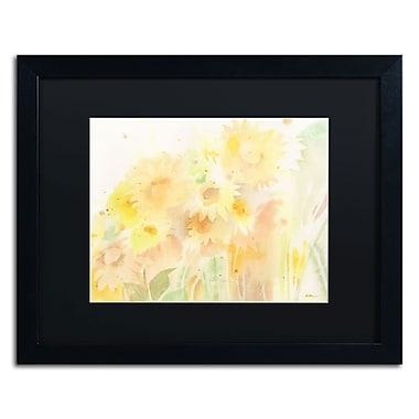 Trademark Fine Art SG5713-B1620BMF