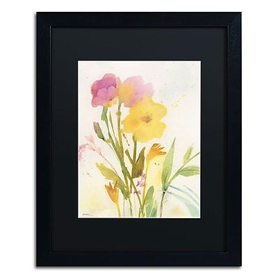 Trademark Fine Art SG5714-B1620BMF