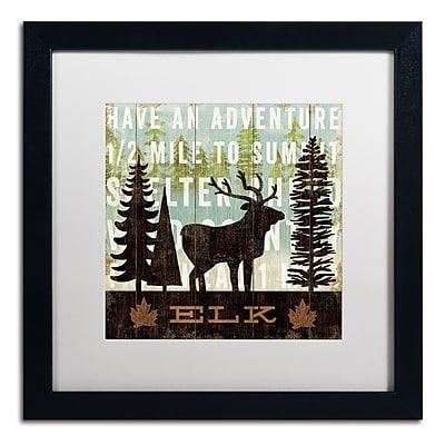 Trademark Fine Art WAP0121-B1616MF