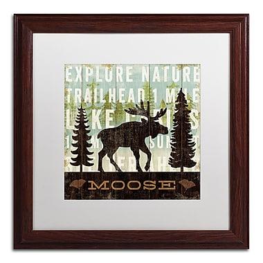 Trademark Fine Art WAP0119-W1616MF