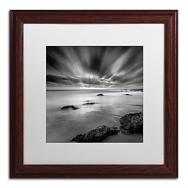 Trademark Fine Art WAP0116-W1616MF