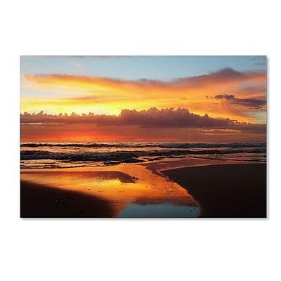 Trademark Fine Art BC0138-C2232GG