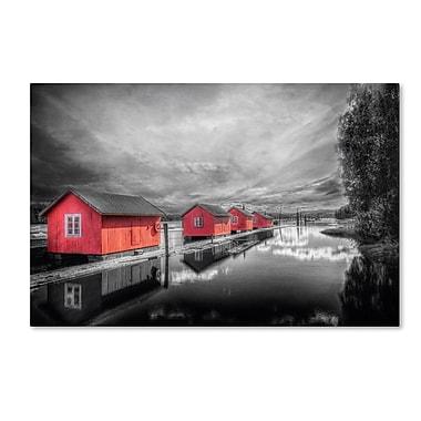 Trademark Fine Art EB0053-C2232GG