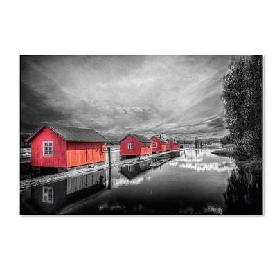 Trademark Fine Art EB0053-C1219GG