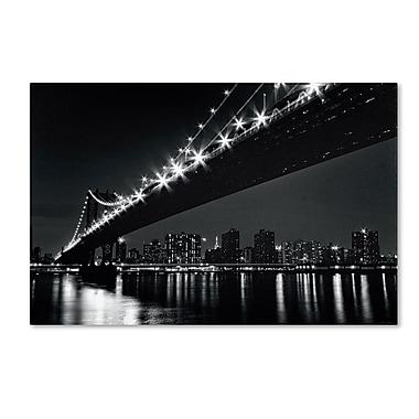 Trademark Fine Art WAP0113-C2232GG