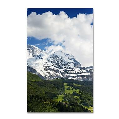 Trademark Fine Art PSL0321-C1219GG