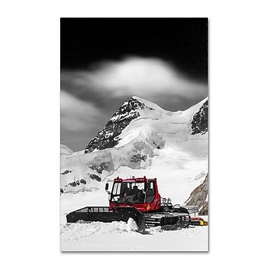 Trademark Fine Art PSL0326-C3047GG