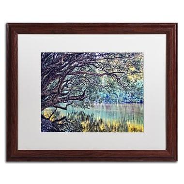 Trademark Fine Art BC0115-W1620MF