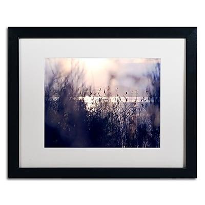 Trademark Fine Art BC0116-B1620MF